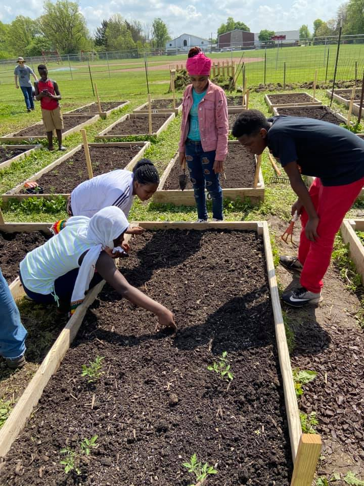 Our Second Year of the Migros AidGarden